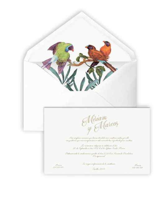 Invitación de boda Bird